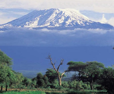 http://www.diseno-art.com/images/kilimanjaro.jpg
