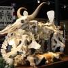 """Cowasaki"" motorcycle made entirely from animal bones"